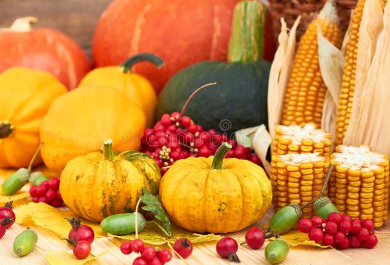 Herbsternte: Kürbise, Beeren, Mais, Blätter und Eichel stockfotos