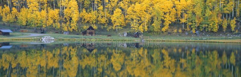 Herbstespen stockfotografie