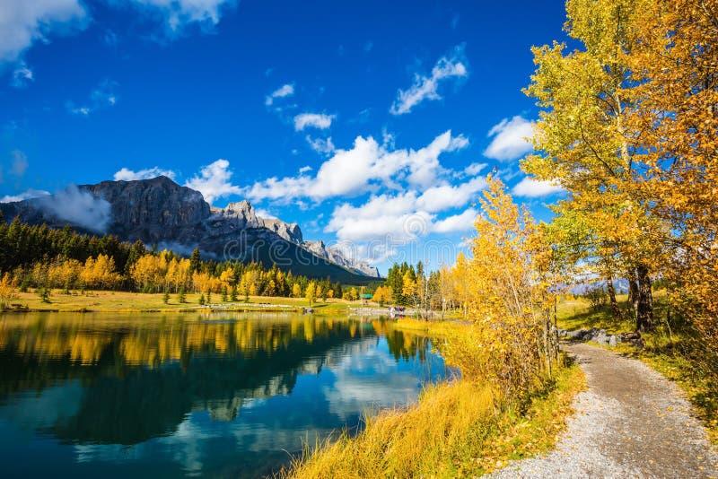 Herbstespen reflektiert im Wasser lizenzfreies stockbild