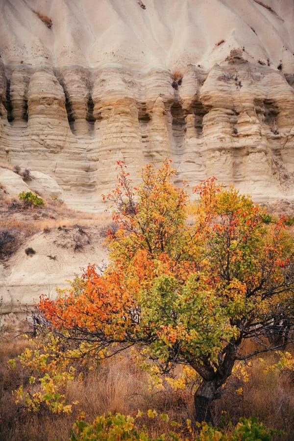 Herbstfarbe in Cappadocia-Berglandschaft, die Türkei lizenzfreies stockfoto