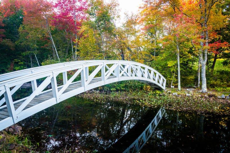 Herbstfarbe und gehende Brücke über einem Teich in Somesville, Maine stockfotos