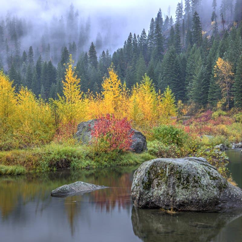 Herbstfarben durch das ruhige Wasser stockfoto