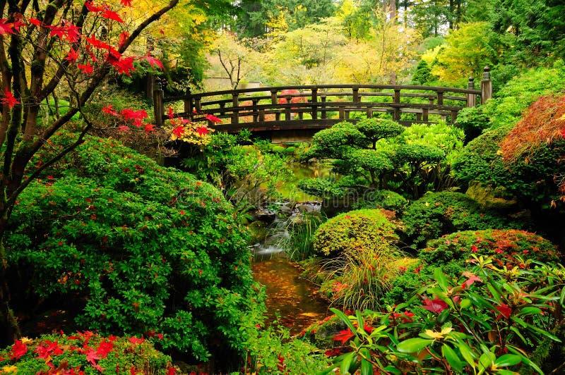 Herbstfarben in einem Park lizenzfreie stockfotografie