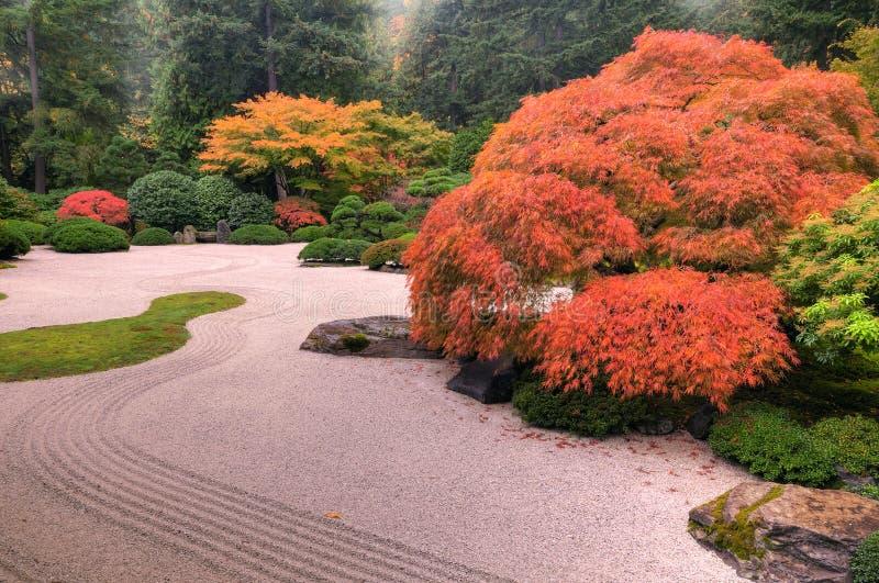 Herbstfarben im Garten stockfotos