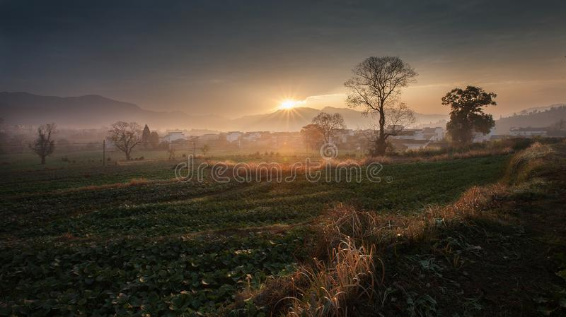 Herbstfeldsonnenaufgang lizenzfreies stockbild