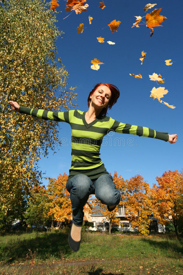 Herbstfliege lizenzfreies stockbild