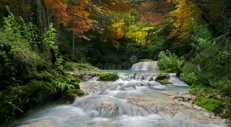 Download Herbstfluß stockfoto. Bild von fall, hintergrund, nave - 27727106