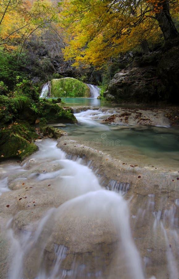 Download Herbstfluß stockbild. Bild von grün, gelb, stein, tourismus - 27727701