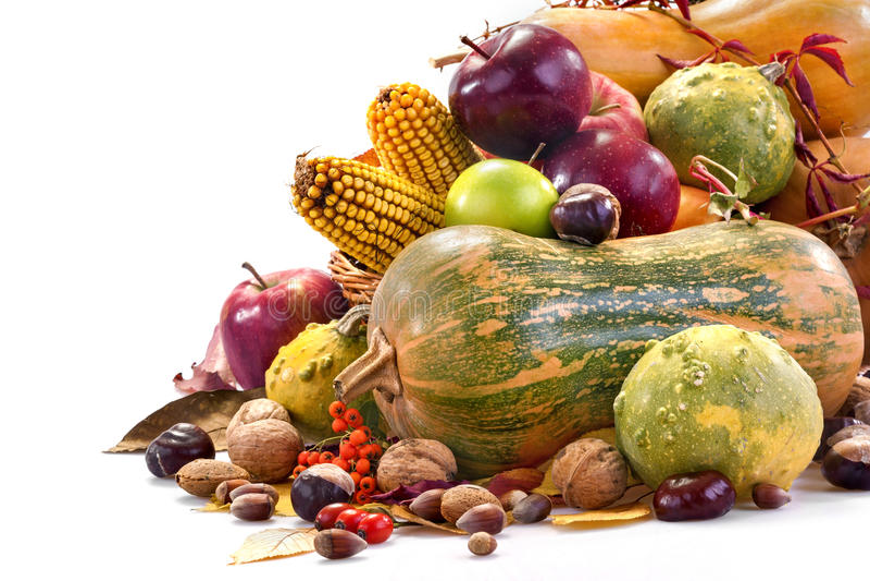 Herbstfrüchte stockbild