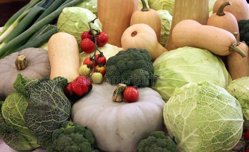 Herbstfrüchte des Gemüsegartens lizenzfreies stockfoto