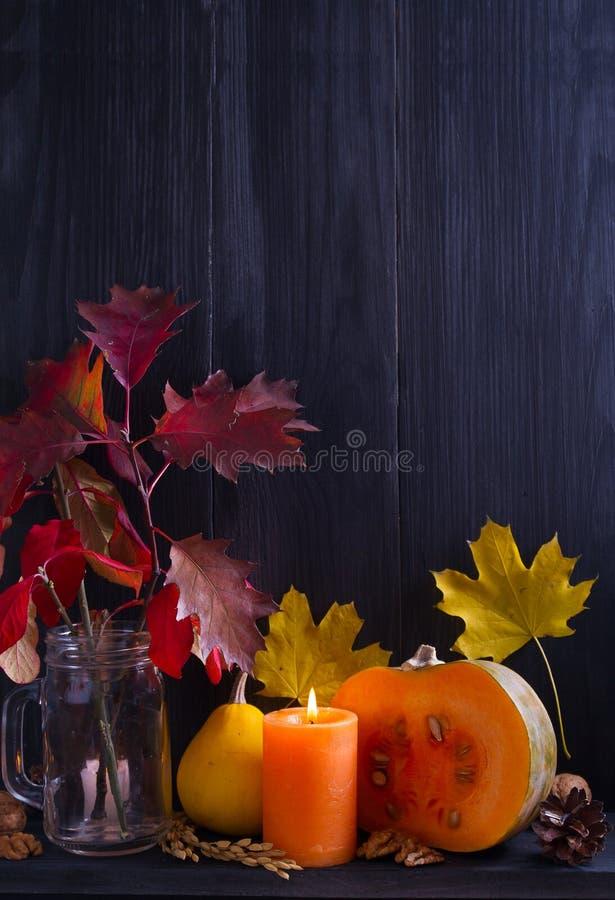 Herbstfrüchte, -gemüse, -nüsse, -weizen und -dekorationen im Regal Ernte- oder Danksagungshintergrund lizenzfreies stockbild