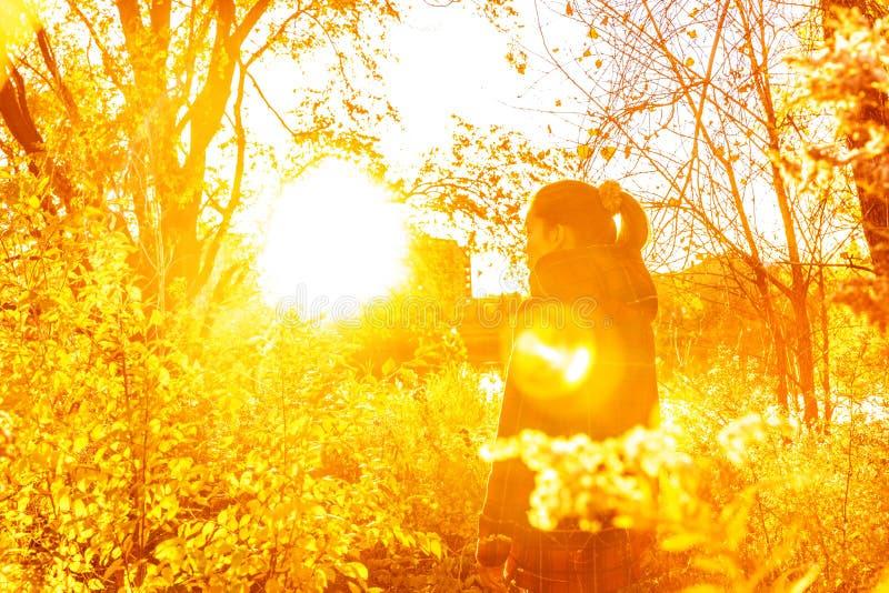 Herbstfrau Sonnen-Aufflackernnatur des schönen Herbstes in der gelben mit fallenden Blättern im Wald stockbild