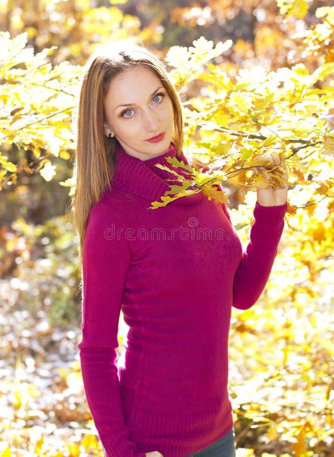 Download Herbstfreuden-Mädchenportrait Stockbild - Bild von sonderkommando, jung: 27726813