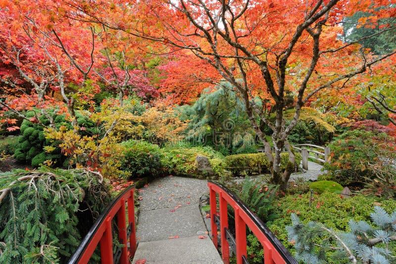 Herbstgarten lizenzfreie stockfotografie