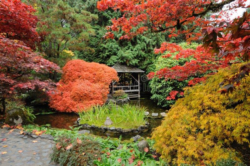 Herbstgarten stockbild