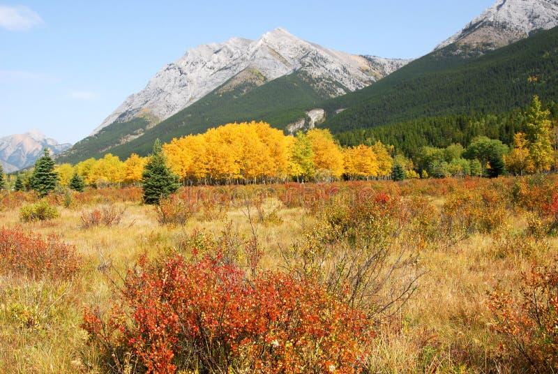 Herbstgebirgslandschaft lizenzfreie stockbilder
