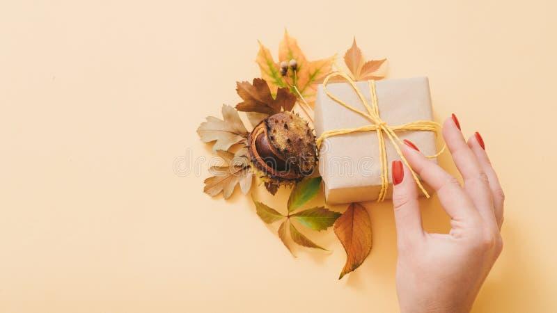 Herbstgeburtstagsgeschenkboxfall-Kastaniendekor stockbilder