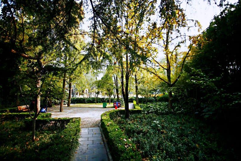 Herbstgedächtnis Zhengzhou stockbilder
