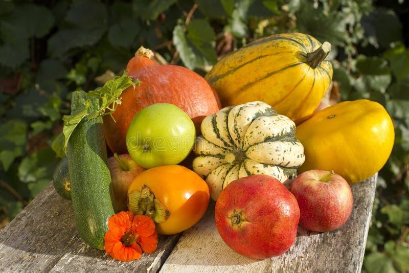 Herbstgemüse und Fruchtansammlung lizenzfreie stockfotografie