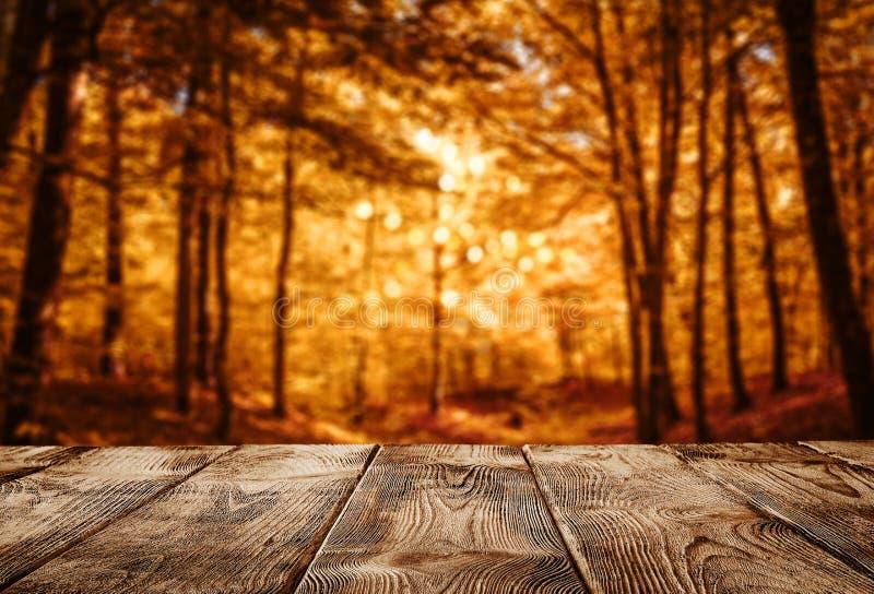 Herbsthintergrund, Holztisch über dem defocused Wald stockfotografie