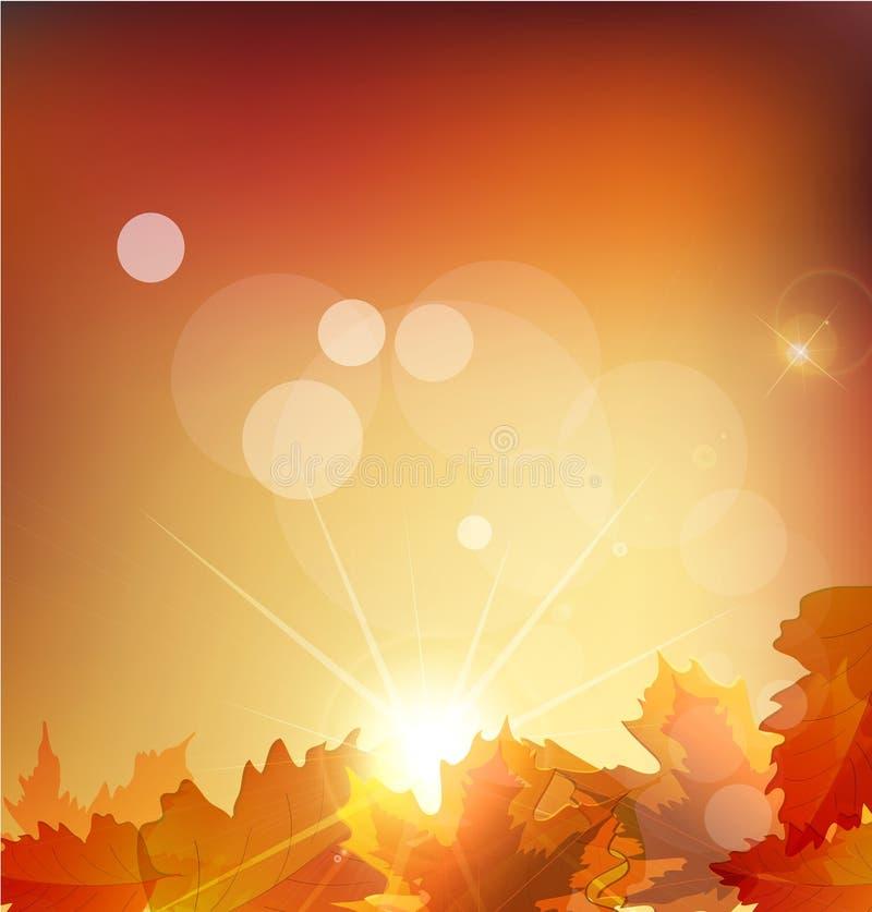 Herbsthintergrund mit Blättern und Sonne lizenzfreie abbildung
