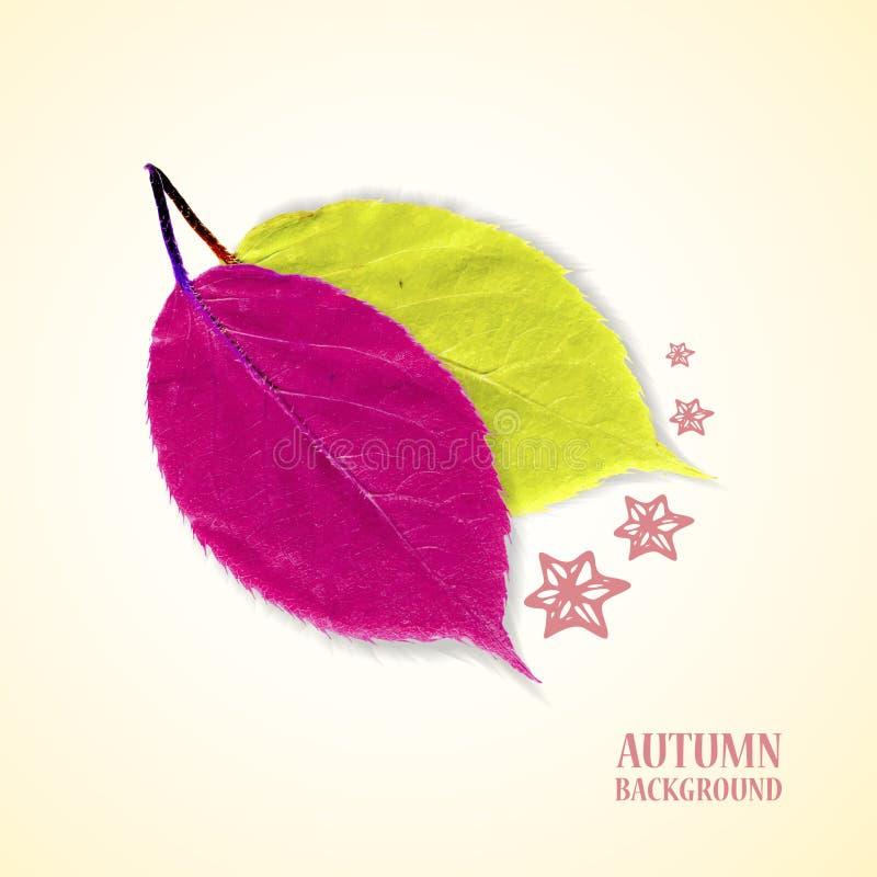 Herbsthintergrund mit Blättern und Sternen im Purpur und im Grün lizenzfreie abbildung