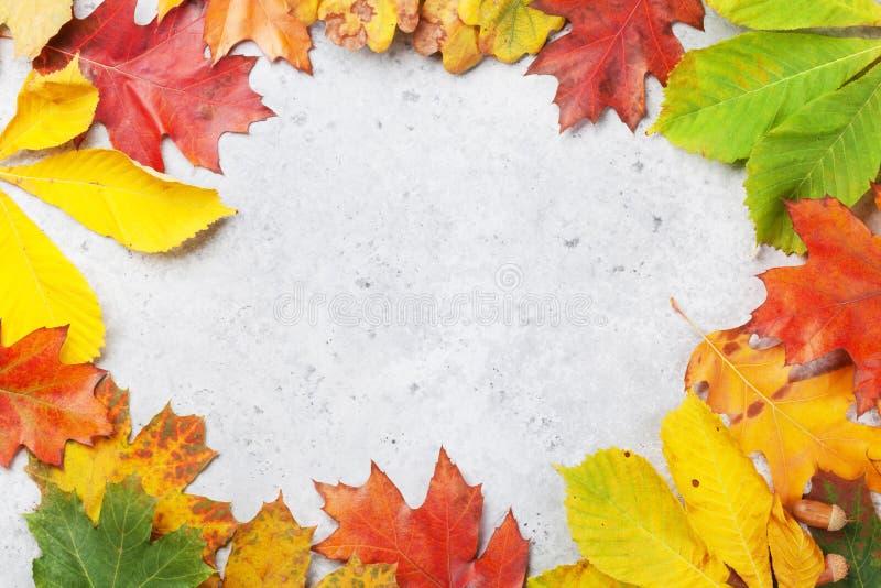 Herbsthintergrund mit bunten Bl?ttern stockfoto