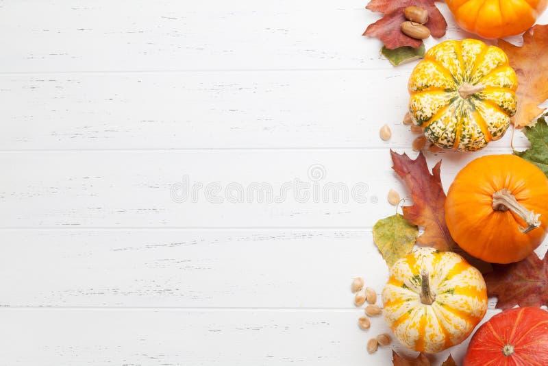 Herbsthintergrund mit K?rbisen und bunten Bl?ttern lizenzfreie stockfotografie