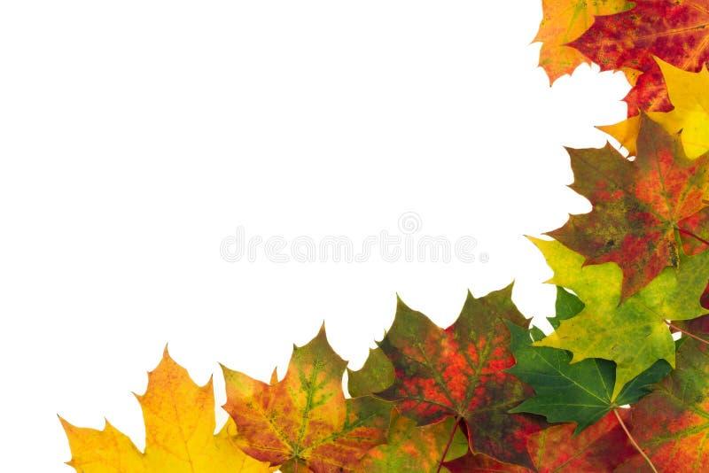 Herbsthintergrund - Rahmen bestanden aus buntem Herbstlaub lizenzfreies stockfoto