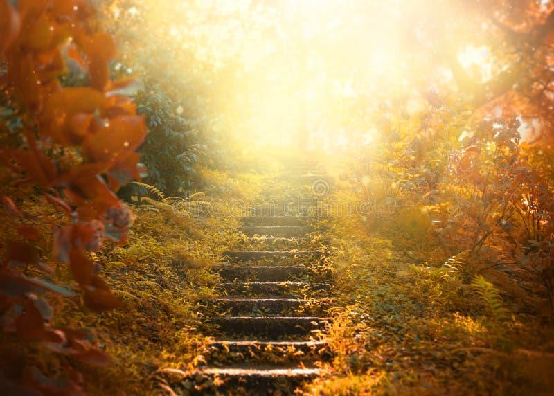 Herbsthintergrund, Treppe zum Himmel überraschende mysteriöse Straßenschritte stockfotos