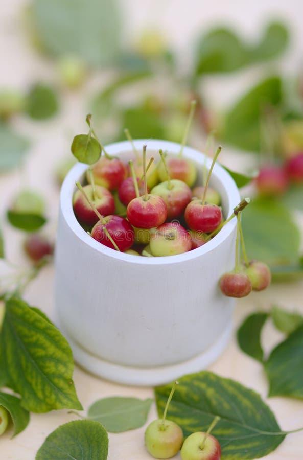 Herbsthintergrund witn kleine rote Äpfel im weißen Korb stockfoto