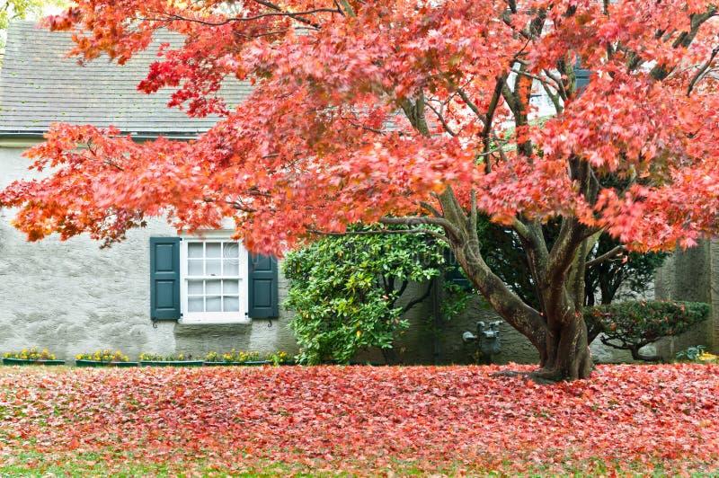 Herbstjahreszeit - Familienhaus mit Vorgarten lizenzfreie stockbilder
