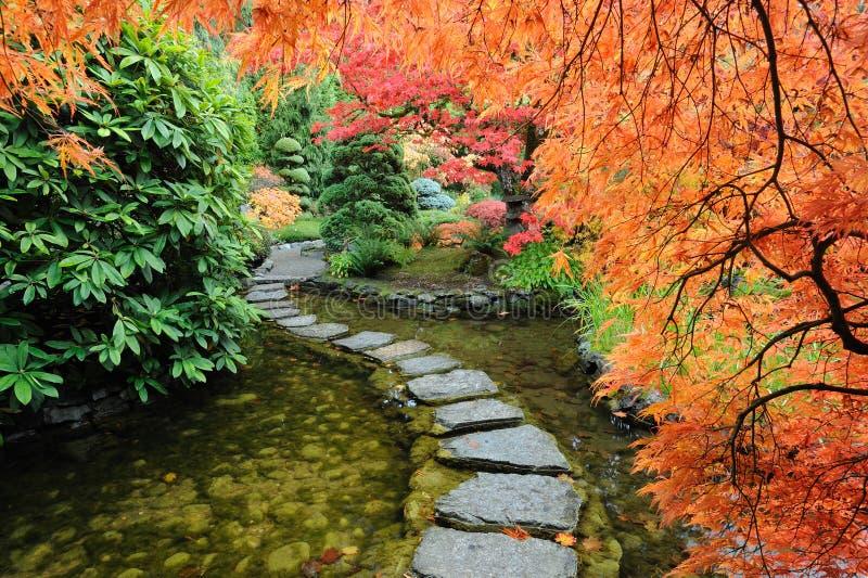 Herbstjapanergarten stockfoto