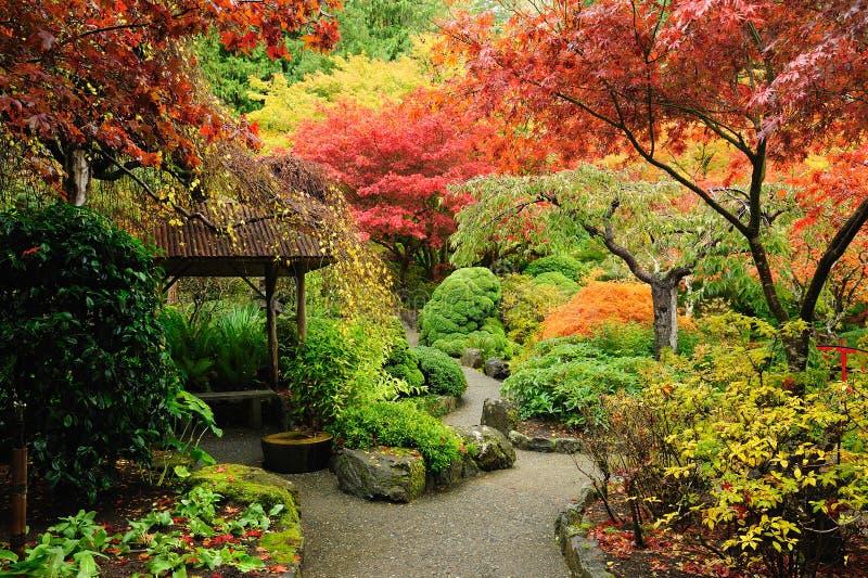 Herbstjapanergarten stockbilder