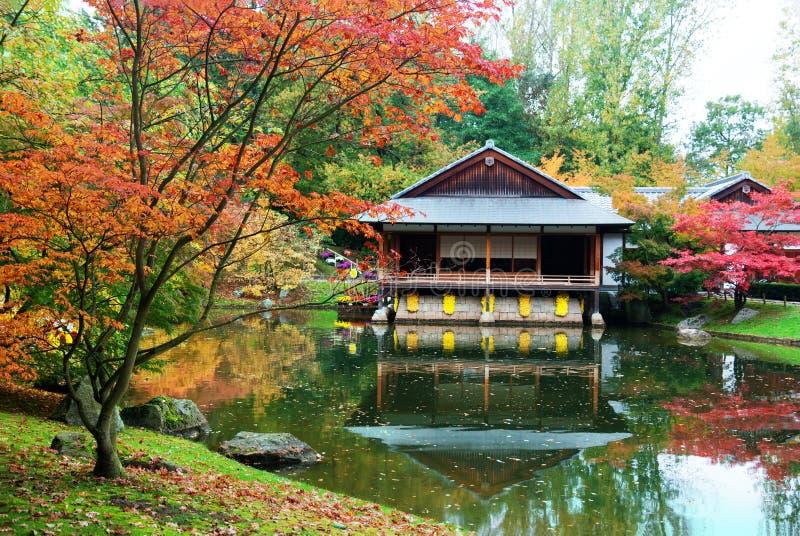 Herbstjapanergarten stockbild