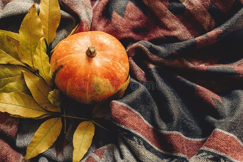 Herbstkürbis mit bunten Blättern auf stilvollem Schalgewebe, Badekurort lizenzfreies stockbild