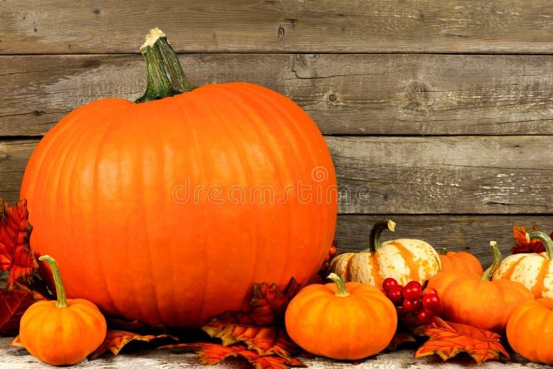 Herbstkürbise und -blätter mit rustikalem hölzernem Hintergrund lizenzfreie stockfotografie