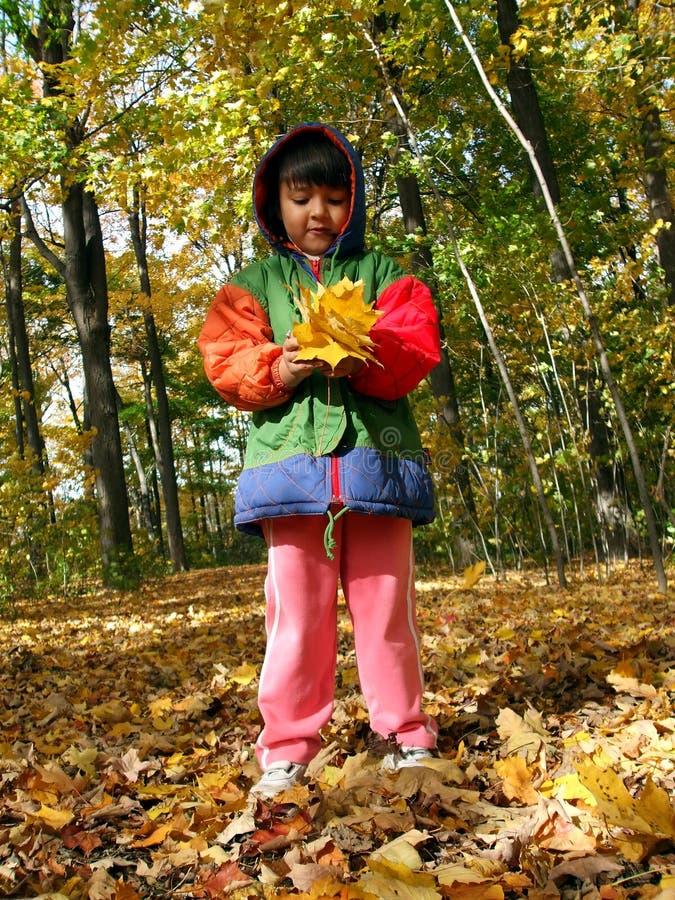 Herbstkind stockfoto