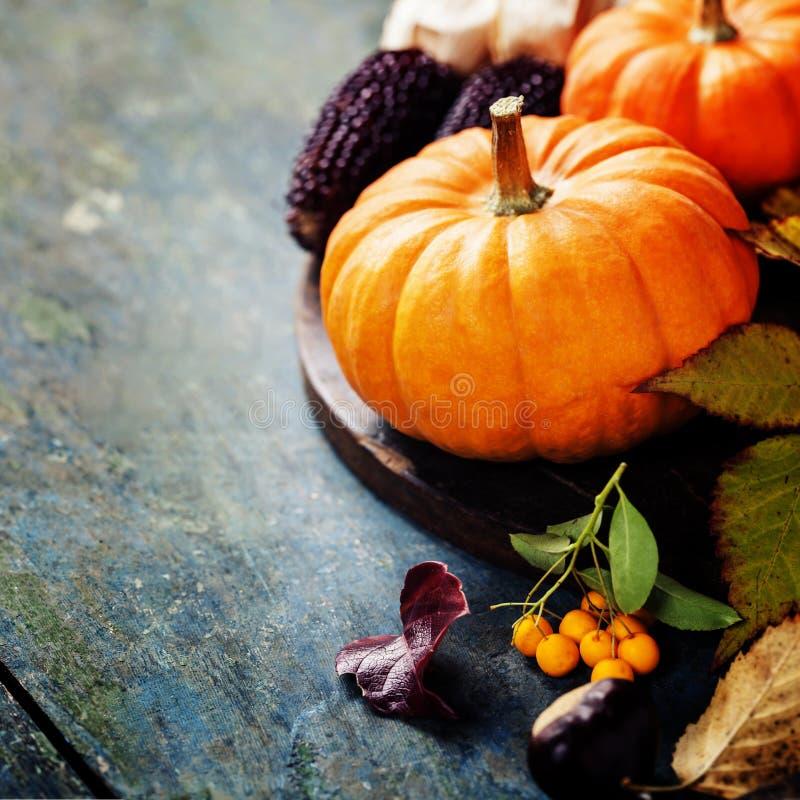 Herbstkonzept mit Saisonobst und gemüse stockfotografie