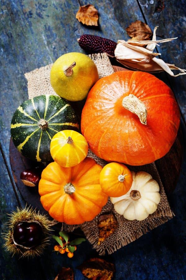 Herbstkonzept mit Saisonobst und gemüse stockbilder