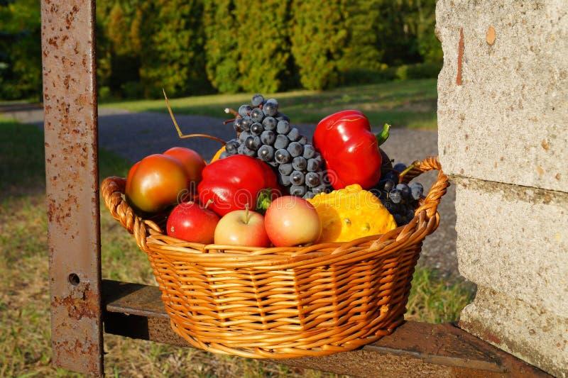 Herbstkorb voll von Obst und Gemüse von stockbild
