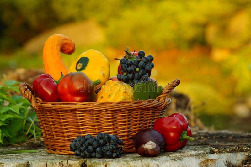 Herbstkorb voll von Obst und Gemüse von lizenzfreie stockfotos
