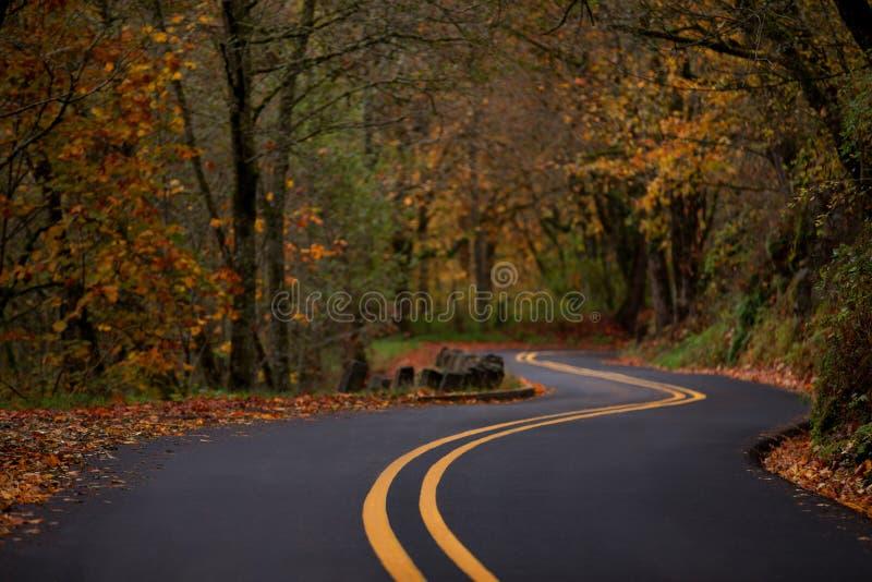 Herbstkurvenreiche straße entlang dem Columbia River Schluchtrekordhoch lizenzfreies stockbild