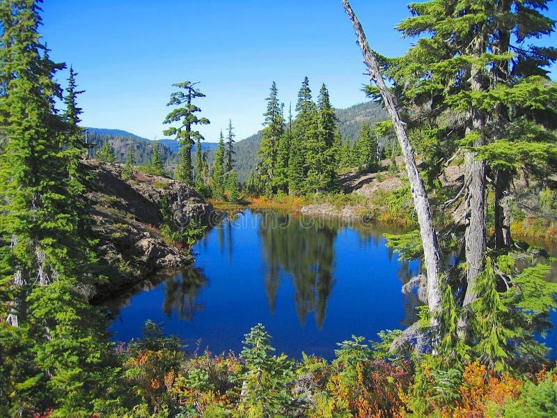 Herbstlandschaft am Ash Pond auf der verbotenen Hochebene, Strathcona Provincial Park, Vancouver Island, British Columbia, Kanada stockbild