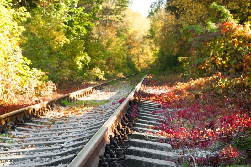 Herbstlandschaft auf der Eisenbahn lizenzfreie stockbilder