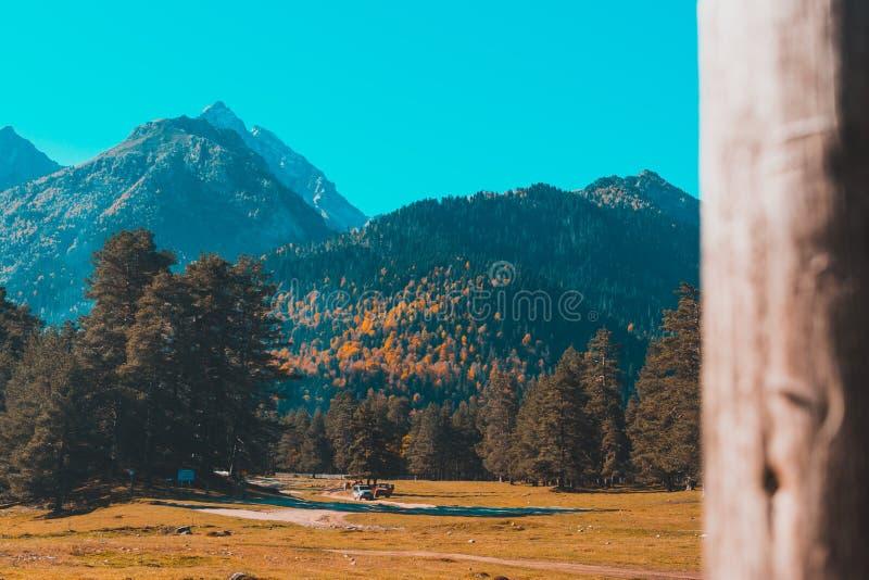 Herbstlandschaft, Bäume auf dem Hintergrund von Bergen, Berge, Natur stockfotografie