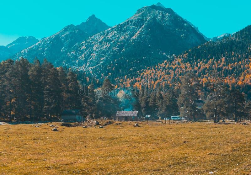Herbstlandschaft, B?ume auf dem Hintergrund von Bergen, Berge, Natur stockbilder
