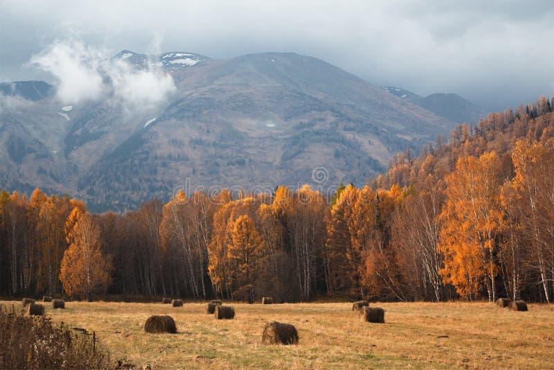 Herbstlandschaft in den Bergen nach Regen stockbilder