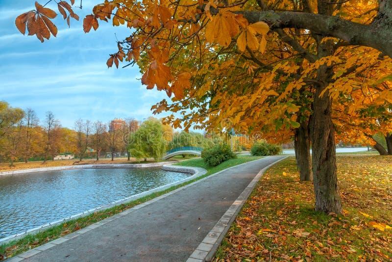 Herbstlandschaft des Stadtparks mit goldenen Bäumen und des Teichs mit Brücke lizenzfreies stockbild
