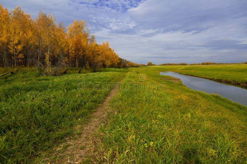 Herbstlandschaft in einem schwer verwitterten Fluss stockbilder